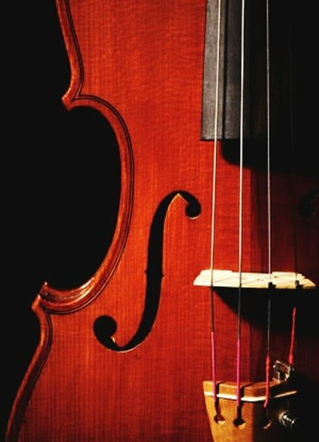 My new friend. Close-up Eye4photography  EyeEm Gallery EyeEm Selects Eyemphotography Eyeem Philippines Violin <3 Browm Classical Music Musical Instrument String Musical Instrument Violin Classical Musician Music Cello Musical Theater  Arts Culture And Entertainment Jazz Music