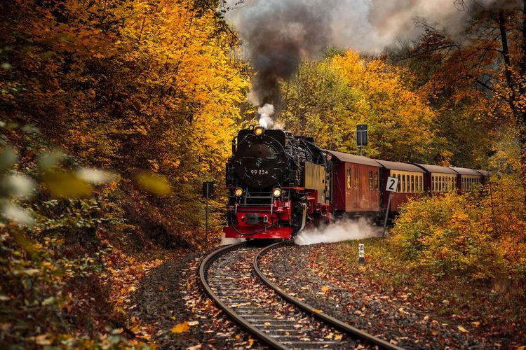 Steam train against trees during autumn