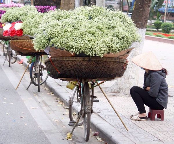 Conical Hat Street Photography Vietnam Bicycle Flowers Flower Seller Selling Flowers Hanoi, Vietnam Making A Living Side Of The Road Ba Dinh, Vietnam Hanoi Florist Up Close Street Photography