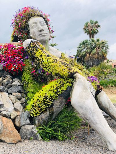 Statue amidst flowering plants against sky