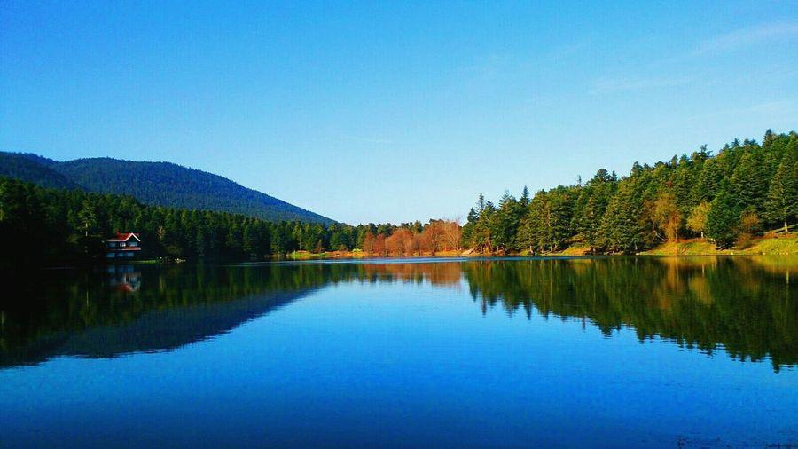 Sky Blue Yellowtree Greentree Turkey Besthouse Lake Sunnyday☀️ Sunshine Hello World EyeEm Nature Lover EyeEm Gallery Lovely Weather Peace And Quiet Abdullahande