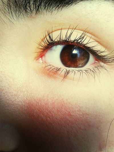 • Eye• First Eyeem Photo