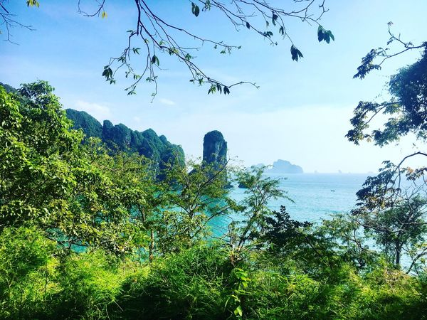 Through the trees View Sky Tranquil Scene Landscape EyeEm Nature Lover Beauty In Nature Travel Thailand SeeTheWorldThroughMyEyes Tranquility Trekking Green Color Blue Krabi Travel Photography (null)Landscape_Collection Ao Nang, Krabi. Beach
