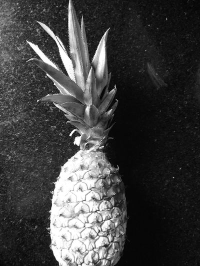 Troféu Abacaxi Black And White Frozen Fruit Pineapple EyeEm Selects Eyeem Market Fruit Photography Flower Nature Flower Head No People Close-up Indoors  Day
