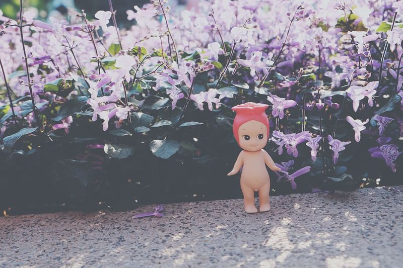 Close-up of doll by flowers