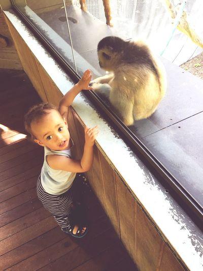 Kidsphotography #children Photography Child Happiness Kids Coolkids MakeFriends Kidsportrait Loveanimals Zoo Zoophotography Kids Toddler  Babyboy Baby Melbournezoo Jettsiraberg