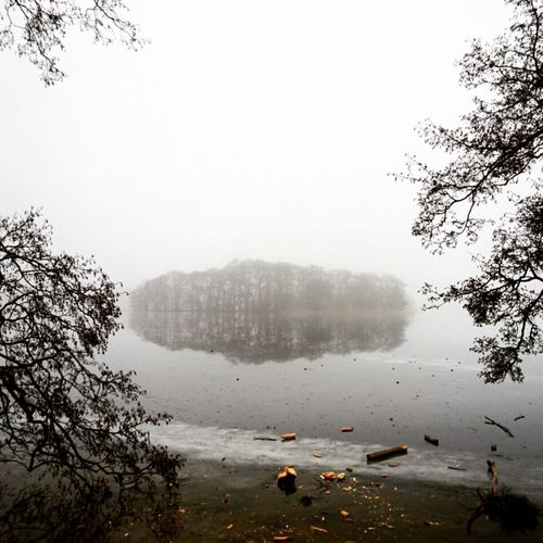Fog Lake Nature Water Reflection Tree Trees Mist Misty Outdoors Tranquility No People Beauty In Nature Scenics Landscape Nature Photography Nature Island Oasis Branches Foggy Blackandwhite Winter Winterscapes Trees And Nature