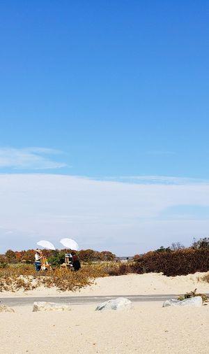 Artist's Painter's Beach Sand Desert Blue Sky