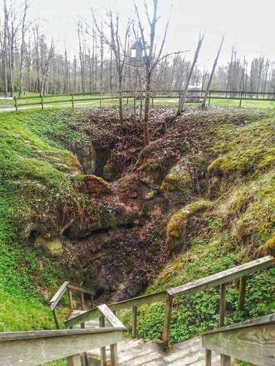 Cow Hole Lithuania Lithuania Nature Sinkhole EyeEm Nature Lover Eyem