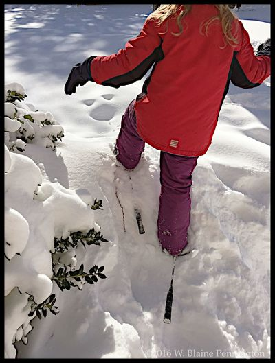 Jessie's Snowshoes Snowshoes Epic Snow Snowzilla Blizzard 2016 Silver Spring