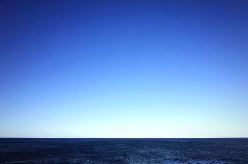Blue. Sydney Ocean Open Edit