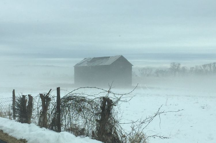 Here Belongs To Me Tranquil Scene Built Structure Outdoors Nature Rural America Barn Limited Visibility Old Buildings Snowstorm Wire Fence Snow ❄ Blizzard 2015 Farm In Snow Rustic Barn