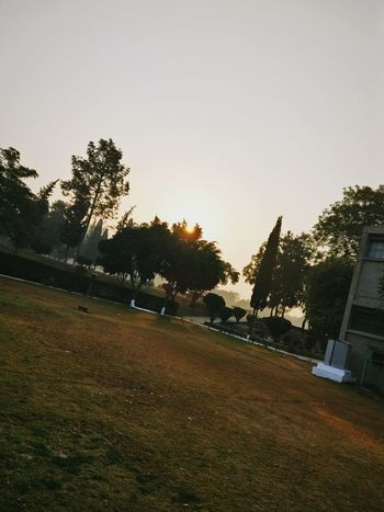 Morning, CEME, NUST, Islamabad, Pakistan Pakistan Islamabad Morning Sunrise Sunlight Nust Ceme Green University Islamabad Pakistan Tree Outdoors No People Tranquility Nature Growth Sky Agriculture Day Beauty In Nature First Eyeem Photo