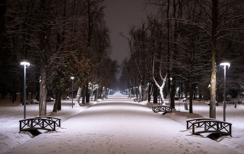Snow covered empty park during winter at night