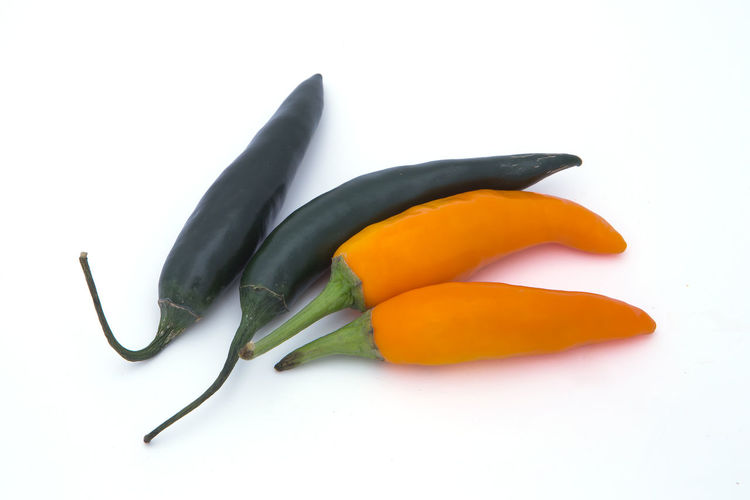Close-up of chili pepper against white background