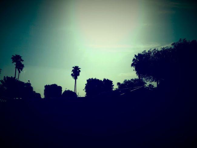 تصويري  ارامكو Saudi_aramco