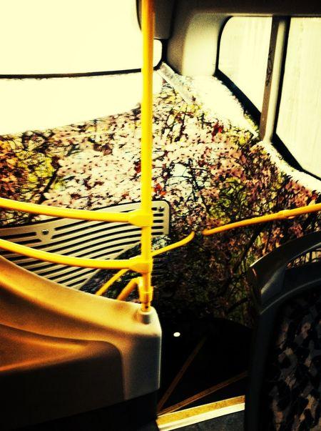 das is doch mal eine bus deko ?