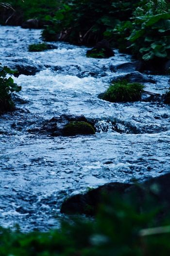 Surface level of river flowing through rocks