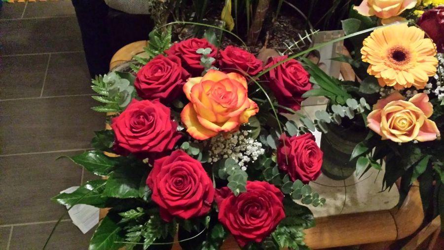 Blumen sind Balsam für die seele First Eyeem Photo
