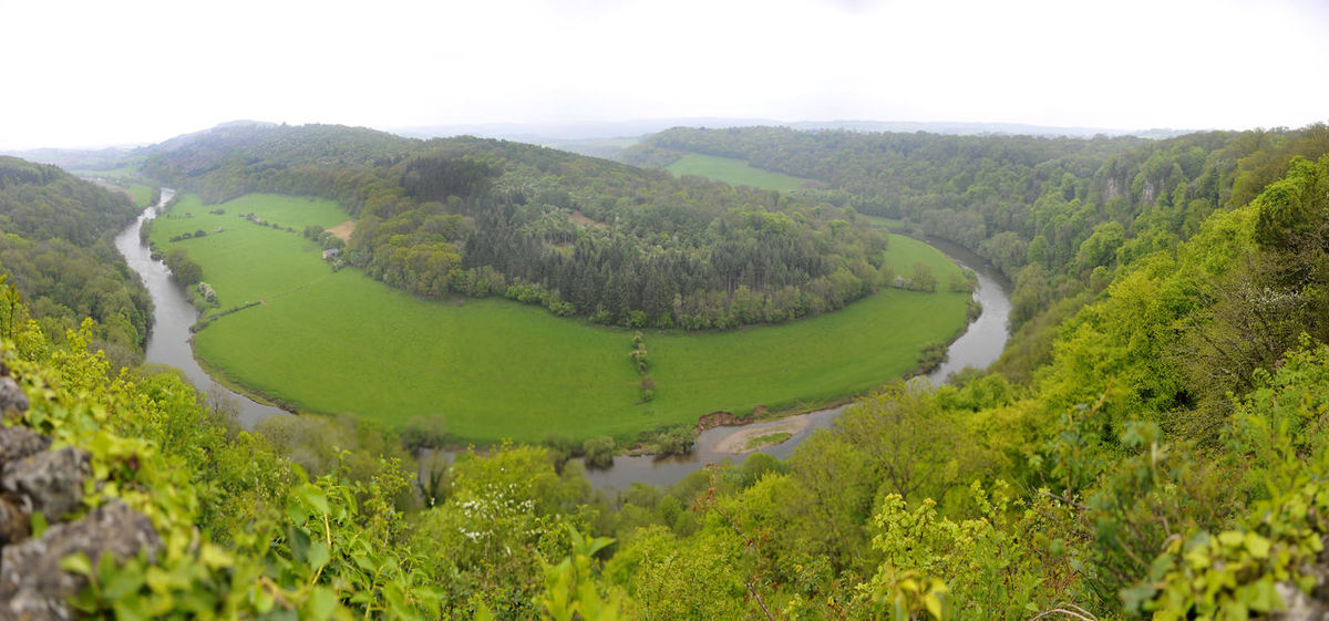Symonds Yat herefordshire panoramic Elevated View Grass Green Herefordsire Landscape Nature No People Panorama River, Countryside, Scenics Symonds Yat Tranquil Scene Trees Water WoodLand