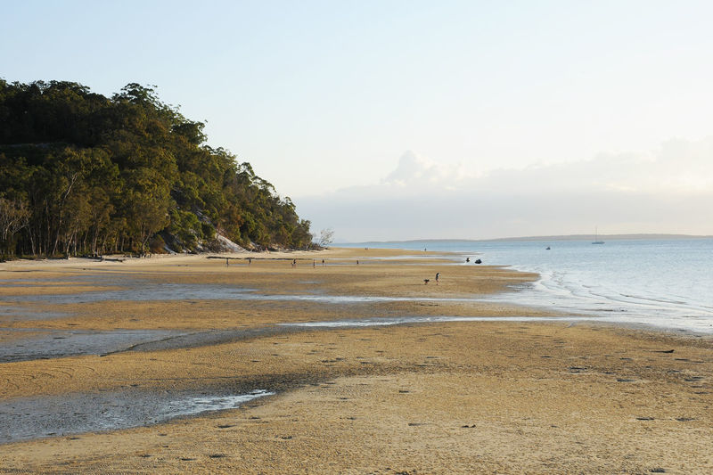 Fraser Island Beach Beauty In Nature Land Outdoors Sand Sea Tranquility Water
