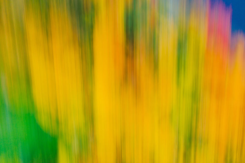 Blurred autumn Mavic 2 Mavic 2 Pro Aerial View Aerial Drone  Drone Photography Europe Autumn Fall Blurred Autumn Yellow Backgrounds Full Frame Blurred Motion Close-up Green Color No People Abstract Vibrant Color Motion Abstract Backgrounds Multi Colored Freshness Nature Pattern Plant Beauty In Nature Textured  Selective Focus Orange Color Bright