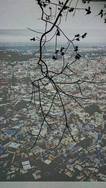 Double Exposure Jodhpur Blue City Mehrangarhfort Top View Rainy Day