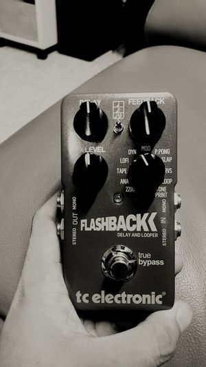 tc electronic flashback Bass Guitar Looper Pedalboard