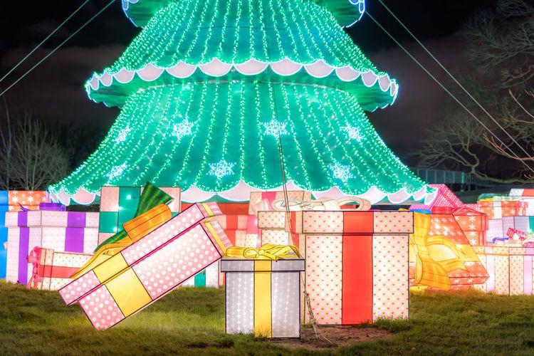 Illuminated christmas decorations hanging on tree at night
