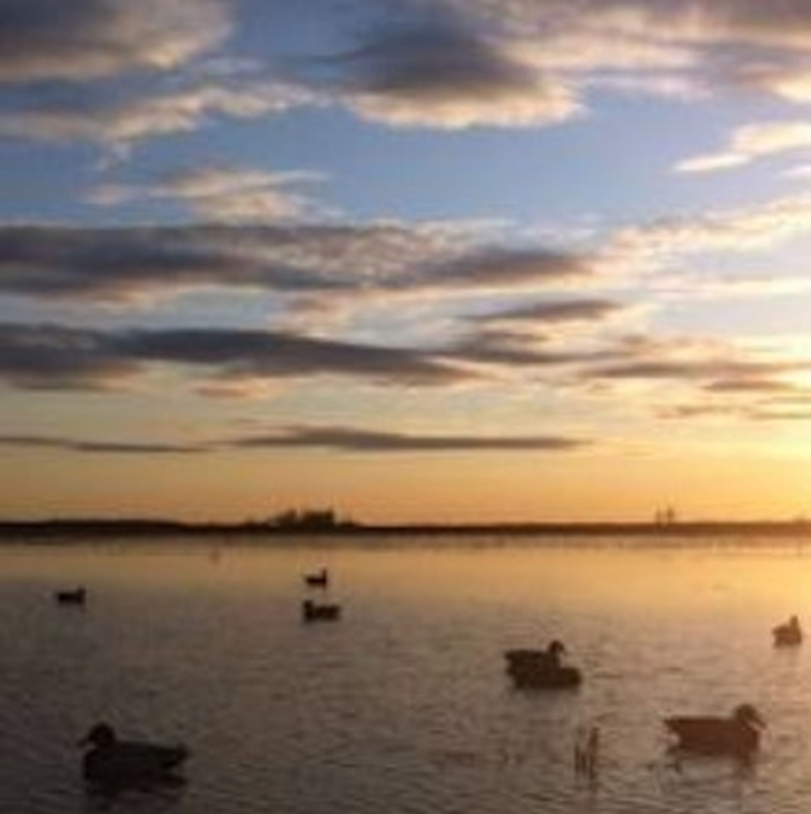 sunset, water, sky, scenics, tranquil scene, sea, tranquility, beauty in nature, cloud - sky, waterfront, nature, orange color, idyllic, cloud, cloudy, reflection, lake, silhouette, horizon over water, rippled