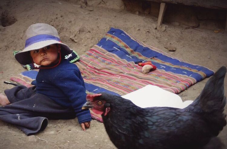 Love overload! One Person Real People Childhood Sand Boys Animal Themes Sitting Lifestyles Full Length Day Outdoors Mammal Domestic Animals One Boy Only People Adult Been There. Kids Chicken - Bird Colors Peru Love Heartwarming Humanity...  EyeEm Gallery