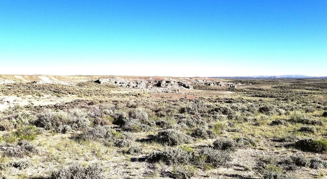 Wyoming Landscape The Great Divide Red Desert Clear Sky Desert Arid Climate Blue Sky Landscape Barren