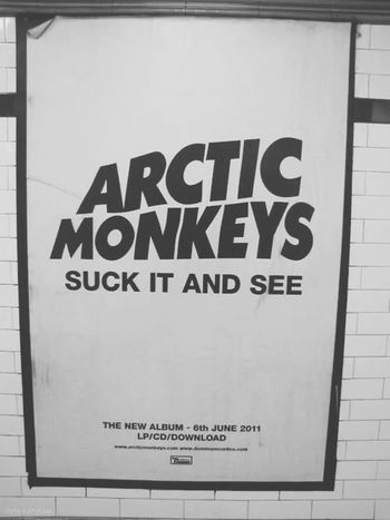 Yes! I love ARTIC MONKEYS :D Artic Monkeys Love♥