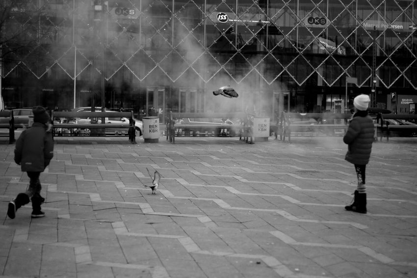 Bird chasing - Copenhagen Real People Built Structure City Outdoors Building Exterior People Architecture