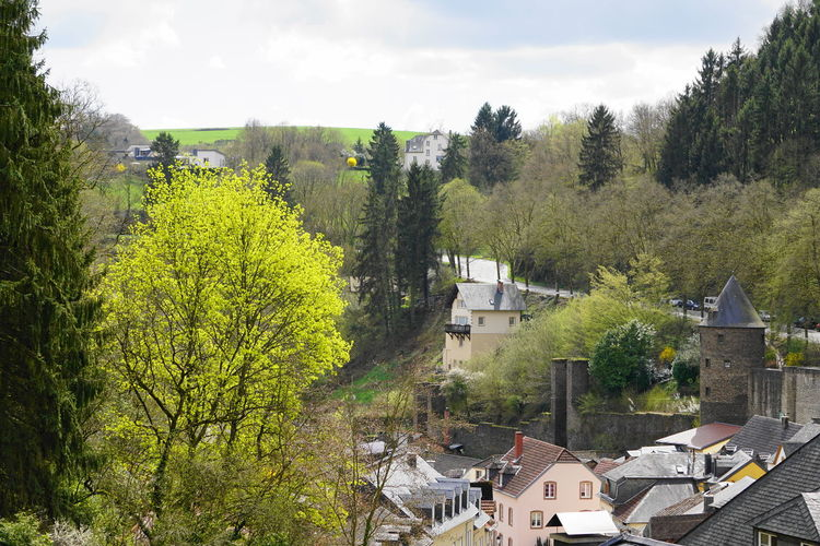 rooftop Luxembourg Rooftop Architecture Authentic Building Building Exterior Built Structure City Day Green Color Growth High Angle View House Land Nature No People Outdoors Plant Residential District Roof Sky Town TOWNSCAPE Tree Vianden