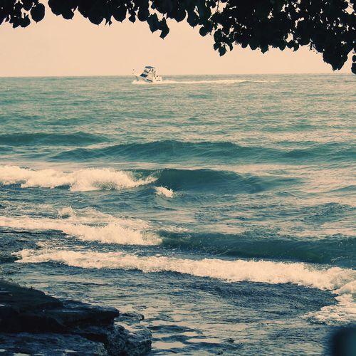 Seagulls At The Lake Lake View Lakeside Lake Erie Lakeview Lake Lakeshore Boats⛵️ Boats And Water Boat Boatlife