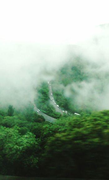 Anchieta Rodovia Serra Paradise Imagination Vscocam Photography Nature Green