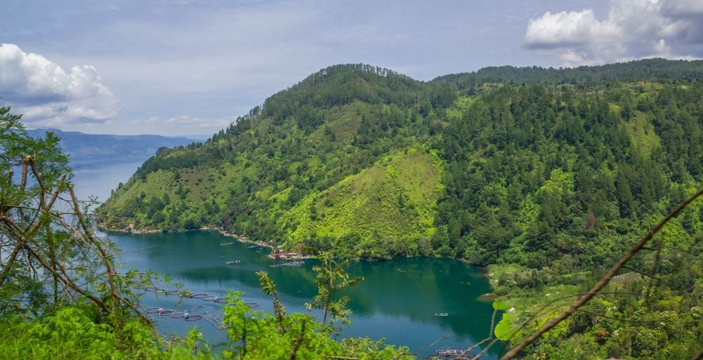 Toba Lake in Medan, Indonesia Toba Beauty In Nature Day Green Color Growth Lake Mountain Mountain Range Nature No People Outdoors Plant River Scenics Sky Tranquil Scene Tranquility Tree Water