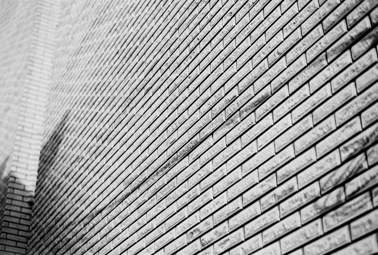 brick wall Exterior Building Exterior Building 35mm Film Analogue Photography Blackandwhite Bnw Residential Building Architecture EyeEmNewHere EyeEm Gallery EyeEm EyeEm Best Shots Focus On Foreground Texture EyeEm Selects Outdoors Backgrounds Full Frame Textured  Pattern Close-up Architecture Built Structure Building Exterior LINE Parallel Repetition Forestry Industry Architectural Detail Seamless Pattern Architectural Design