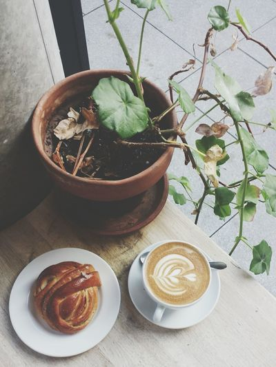 EyeEm Selects High Angle View No People Indoors  Day Flower Freshness Close-up Nature Plants 🌱 Plants Coffee Coffee Cup Cardamom Bun Pastry