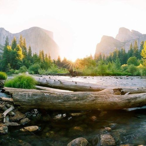 Eternal Sunrise, Yosemite National Park. Mountain Nature Rock - Object Landscape Forest Pinaceae Beauty In Nature Scenics Outdoors Tree Pine Tree Sunset Mountain Range No People Day Water Sky