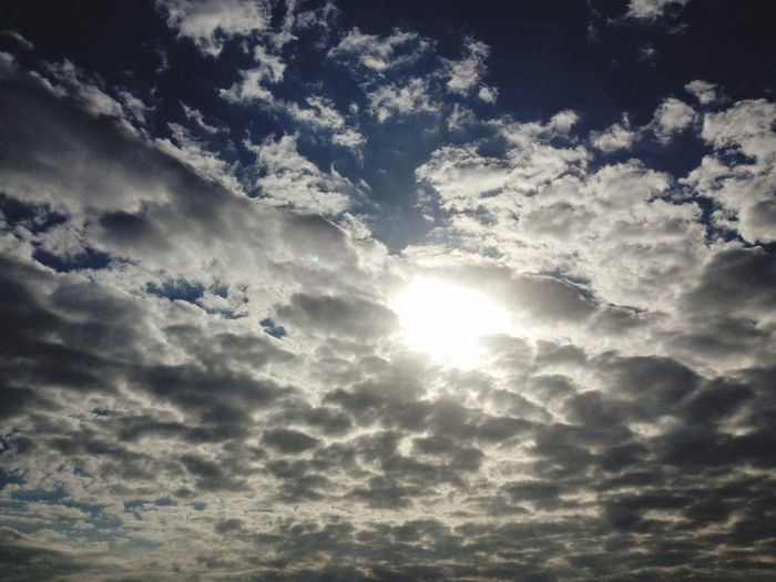 Sky Cloud - Sky Low Angle View Beauty In Nature Tranquility Sunlight Nature Scenics - Nature Sunbeam Flying Cloudscape Day Autumn Mood