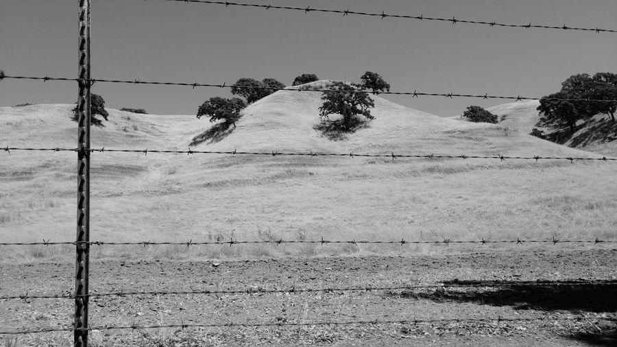 Barbed Wire Barbed Wire Fence Black And White Photography Black And White Collection