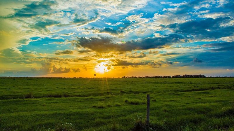 Sunset on the Prairie Sunset Field Nature Agriculture Scenics Landscape Tranquil Scene Beauty In Nature Tranquility Cloud - Sky Rural Scene Dramatic Sky No People Outdoors Sun Green Color Growth Sky Tree Grass Nature Tree Beauty In Nature EyeEm Selects Grass