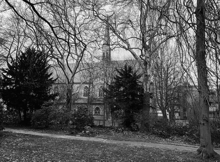 Ostfriedhof. 5/7 ShotOnIphone Photooftheday Photography Photographer Trees Park Church EyeEm Best Shots EyeEmBestPics EyeEm Selects EyeEm Best Edits EyeEm Gallery Blackandwhite Photography Black And White Blackandwhite Check This Out Capture Close-up Tree Full Frame No People Plant Pattern Day Backgrounds Nature Architecture Outdoors Built Structure Wall - Building Feature
