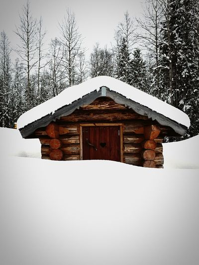 There is something magic with snow. Snow Architecture Winter Holiday