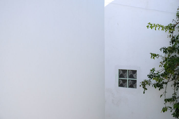 Colour Your Horizn Minimalist Architecture The Graphic City Architecture Building Exterior Built Structure Day Fujifilm X-t20 Minimal Minimalism Minimalobsession Nature No People Outdoors White Background White Color Whitewashed Window