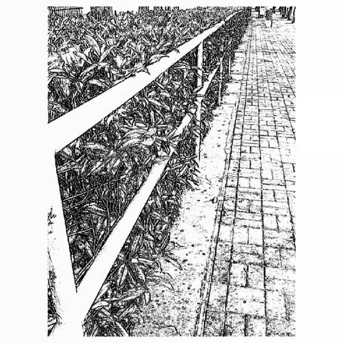 Simplesketch Sketch Blackwhite B &w Ilobsterit Road StreetScenes Cityscenes