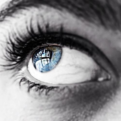Window to freedom. Ciara. Ciara Eye Instaeye Selfie followme f4f ig_cuneo ig_spain ig_falcon ig_infocus ig_alicante ig_worldclub ig_phenomenal ig_photogramers valenciagram valenciagrafias insta_ñ instagood instafoto_ve ig_mexusa chiquesnourtemo looking ojo