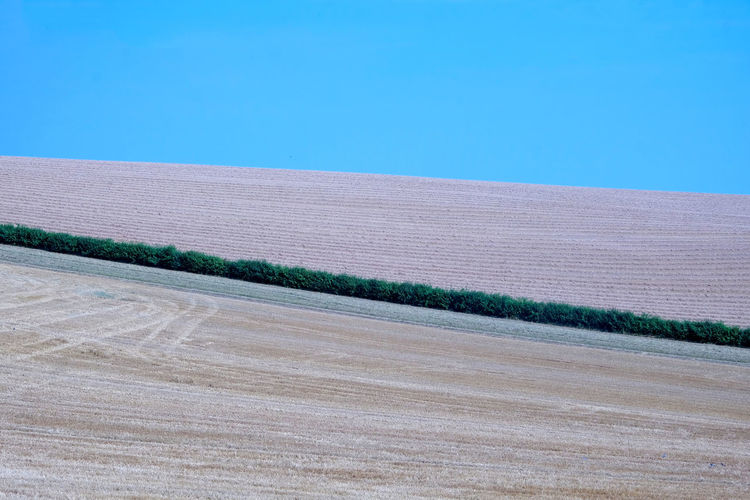 Lines Agriculture Arid Climate Beauty In Nature Blue Clear Sky Copy Space Day Environment Field Fields And Sky Growth Land Landscape Lines And Shapes Nature No People Outdoors Plant Rural Scene Scenics - Nature Sky Tranquil Scene Tranquility